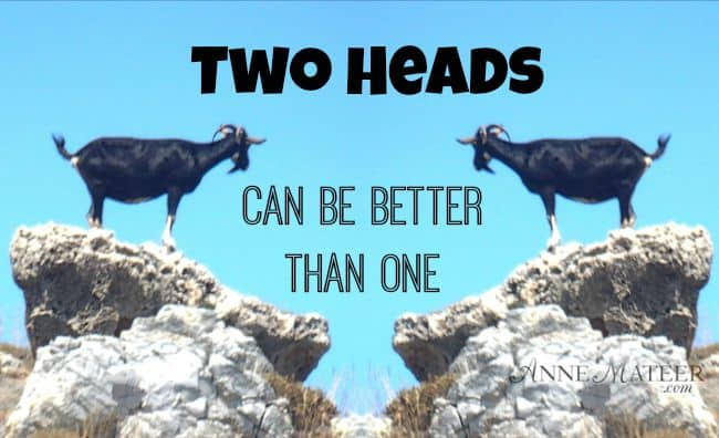 Two Heads Can Be Better Than One